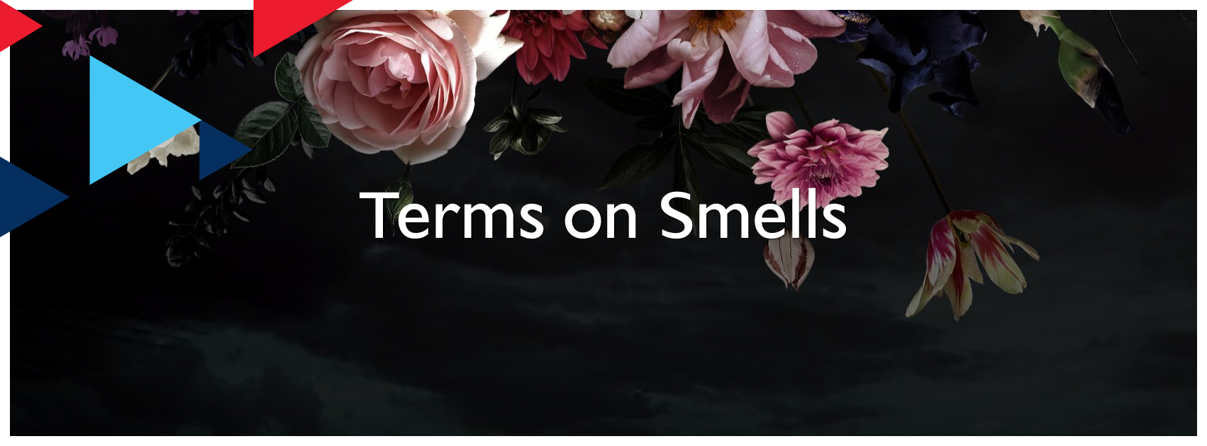 Terms on Smells