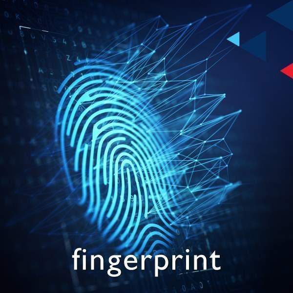 fingerprint, footprint & palm print